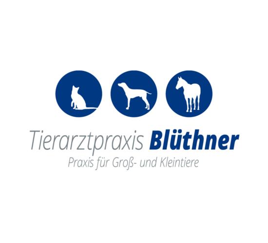 Logo Tierarztpraxis Bluethner